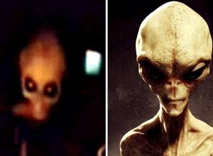 Terrified Alien Interviewed
