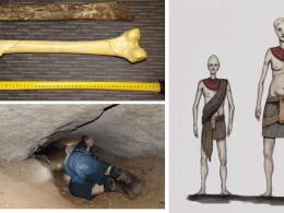 New Zealand giant humans
