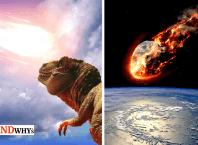 Dinosaur Remains on Moon